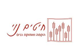 לוגו חיטים נוי